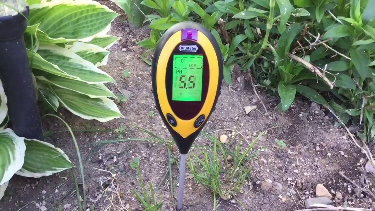 How you can test soil PH