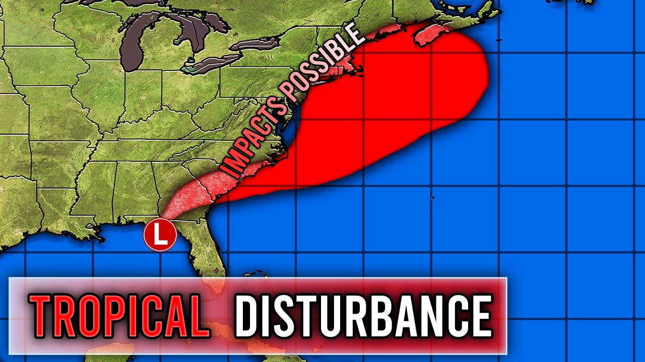 Our Next Tropical Cyclone
