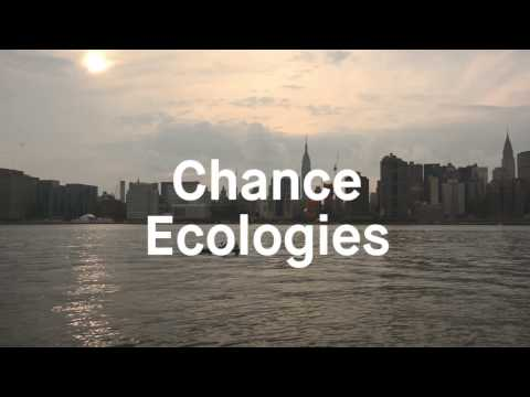 Sunday, Mar 19 – Chance Ecologies with Nathan Kensinger & Catherine Grau