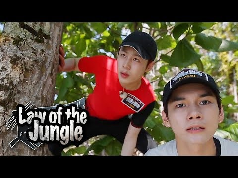 OngSeongWu & HaSungWoon, They're One With The Jungle!!! [Law Of The Jungle Ep 325]