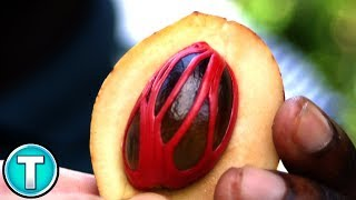Top 10 Fruits You've Never Heard Of Part 11