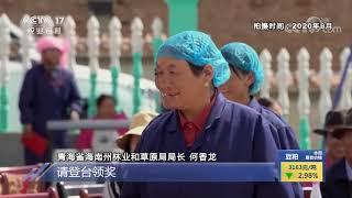 《中国三农报道》 20201115|CCTV农业 - YouTube