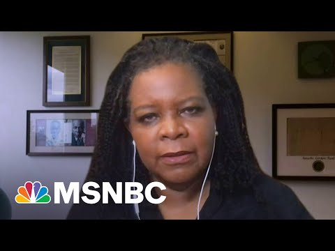Annette Gordon-Reed: History Teaches Us About Change Over Time | Morning Joe | MSNBC
