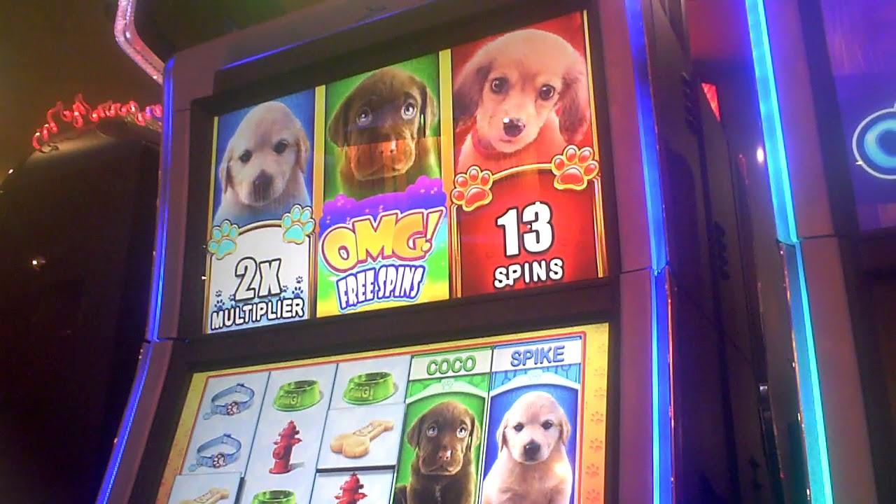 Omg puppies slot machine online