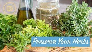Preserve Your Herbs! 3 Easy Ways
