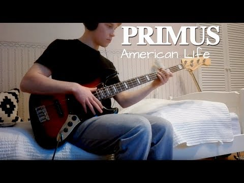 Primus - American Life [Bass Cover]