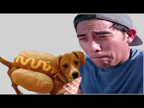 Best Zach King Maagic Tricks 2018 - Most Awesome Zach King Magic Hack Lifes that Make Life Easy Fun