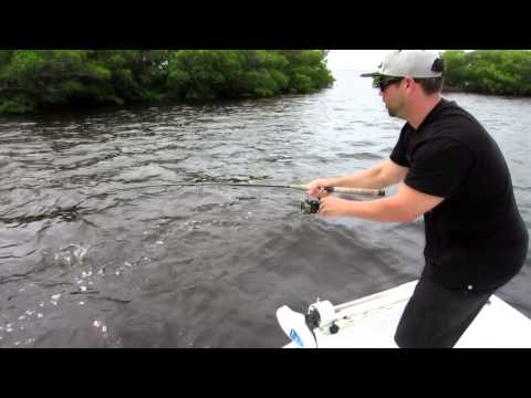 Fort Myers Beach Fishing Guide 239-246-3579