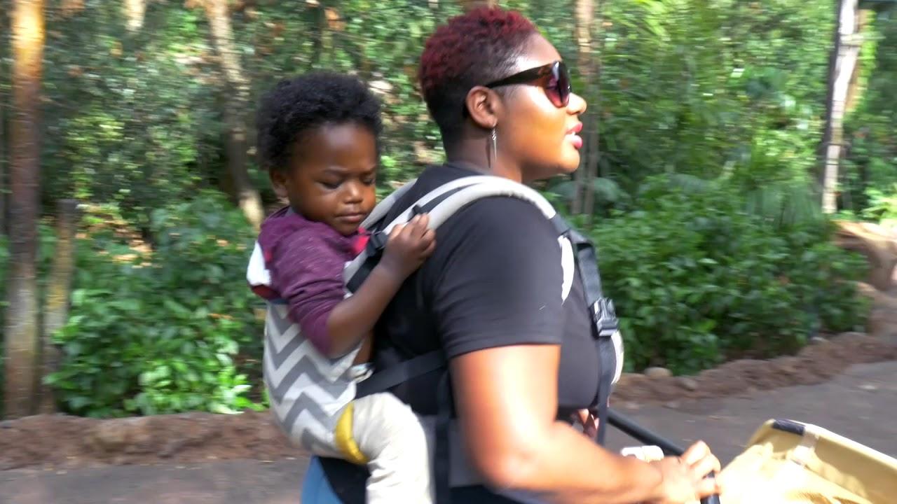 Family Vlog - We Go To Animal Kingdom's Pandora!!