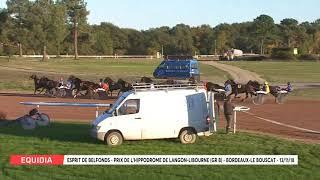 Vidéo de la course PMU PRIX DE L'HIPPODROME DE LANGON-LIBOURNE (GR B)