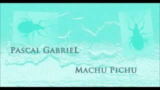 Pascal Gabriel - Machu Pichu