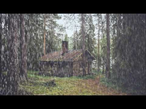 Rain On A Woodland Cabin Relaxing Sounds 2 Hours Long
