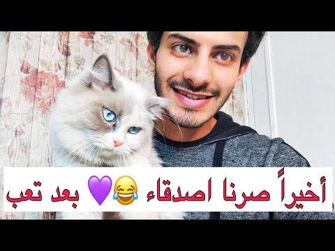 البسه الشريره 😾 صارت اليفه 😻والصغار تعالجوا من الفطريات ( كيف اجعل القطه تحبني )   Mohamed Vlog