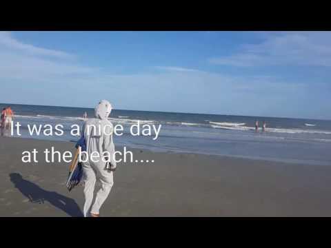 Shark Attack In Hilton Head Island
