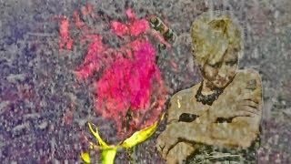 Roses Music Video (The Cranberries, Roses Album)