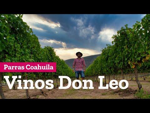 Vinos Don Leo, el mejor vino Cabernet Sauvignon del mundo, Parras Coahuila