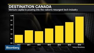 The Stars Align for Canadian Tech