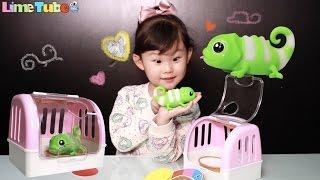 변덕쟁이 카멜레옹이 기분을 맞춰요! ❤︎ 라임이의 장난감 놀이 LimeTube & Toy 라임튜브