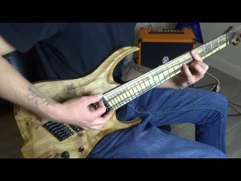 Vitalism - Yamí Obi Guitar Cover   Skervesen Chiroptera