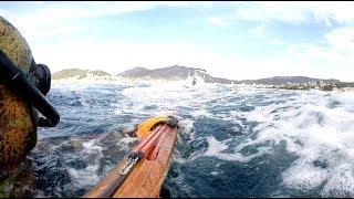 A quelques centimètres de la mort.... Chasse sous-marine Corse thumbnail