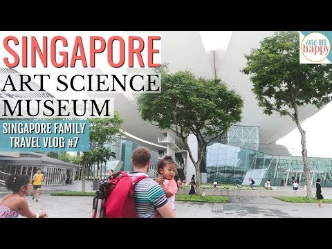 Singapore Travel Vlog #7 THE MOST AMAZING PLACE!!! Singapore's Art Science Museum