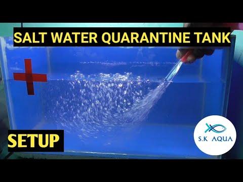How To Setup A Quarantine Tank |TAMIL|