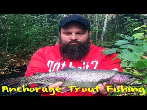 Anchorage Stream Trout