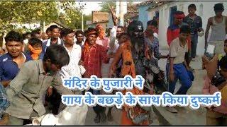 भगवा धारी मंदिर के पुजारी का गजब कारनामा!! देखकर हैरान रह जाएंगे