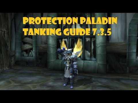 Protection Paladin Tanking Guide 7.3.5