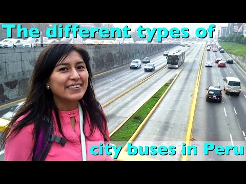 The different city buses you'll find in Peru (Video 37)
