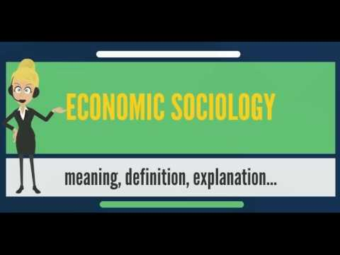 What is ECONOMIC SOCIOLOGY? What does ECONOMIC SOCIOLOGY mean? ECONOMIC SOCIOLOGY meaning