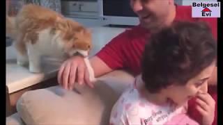 Hayvanlardaki Koruma İçgüdüsü