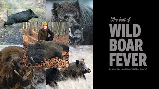 The Best of Wild Boar Fever - Hunters Video