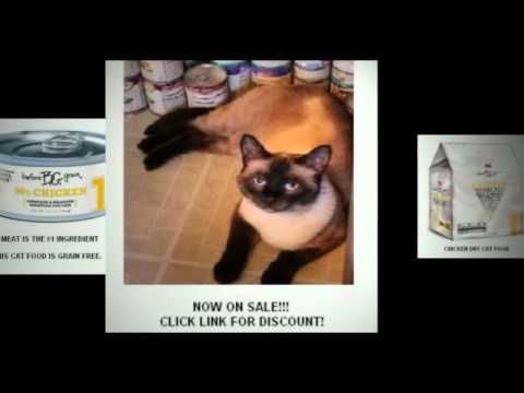 Merrick Cat Food Review Youtube
