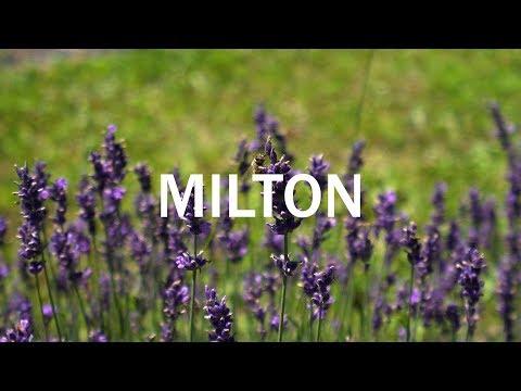 Milton - Canada In 4K
