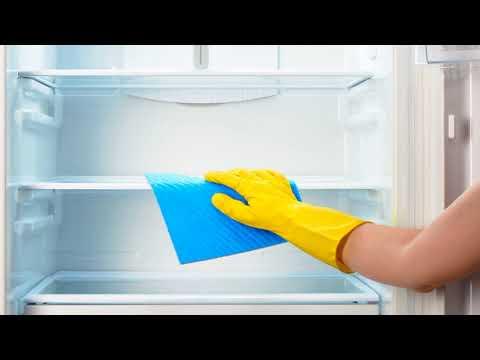 Как удалить запах из холодильника в домашних условиях народными средствами?