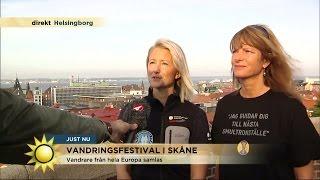 Vandrare samlas i Skåne - Nyhetsmorgon (TV4)