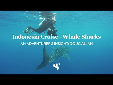 An Adventurer's Insight into Indonesia: Doug Allan
