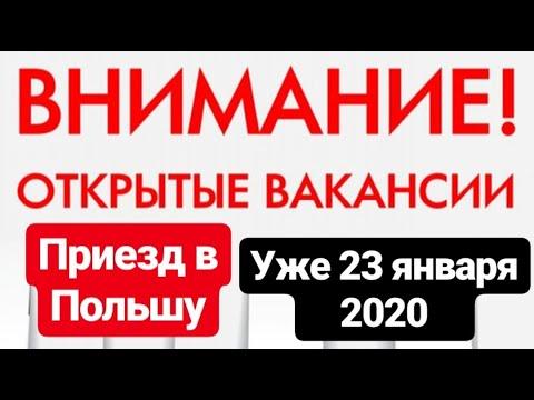 Бесплатные новые вакансии в Польше. Январь 2020. Не пропустите!