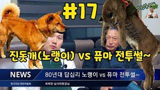 #17 멍멍이삼촌 80년대 진돗개 강화노랭이 vs 퓨마…