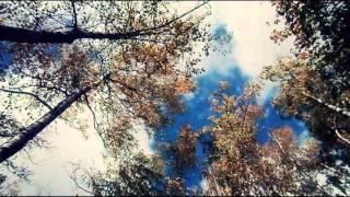 Set Me Free (Empty Rooms) Lyrics