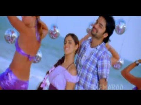 Ready Telugu Movie | Om Namaste Bolo Song | Ram | Genelia | Srinu Vytla | Devi Sri Prasad