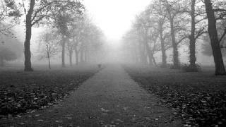 Dark Reality - ( Umbra cineris - Sternennacht )