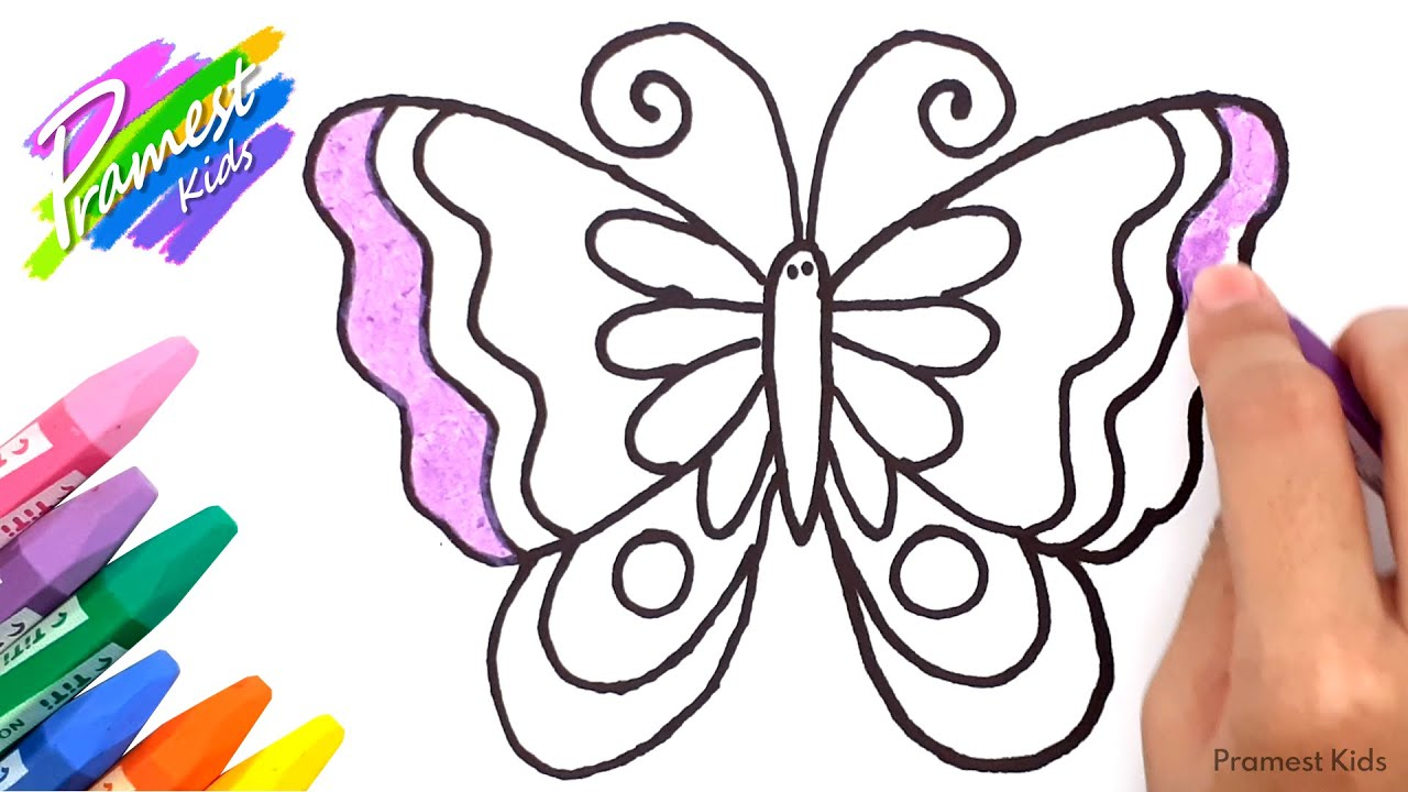 Menggambar Dan Mewarnai Kupu Kupu Dengan Crayon Youtube