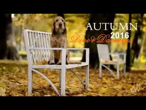 AUTUMN 2016 ~ touch and go~