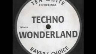Ravers Choice - Techno Wonderland