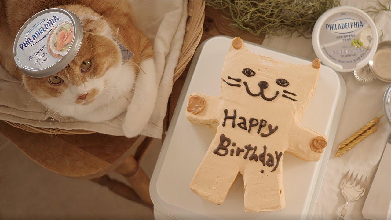 고양이 케이크 만들기