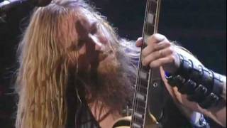 Zakk Wylde insane solo HD