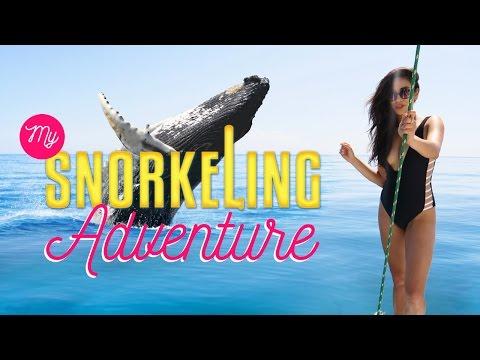 my-snorkeling-adventure-|-shaycation-hawaii-pt.-2