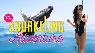 My Snorkeling Adventure | Shaycation Hawaii Pt. 2